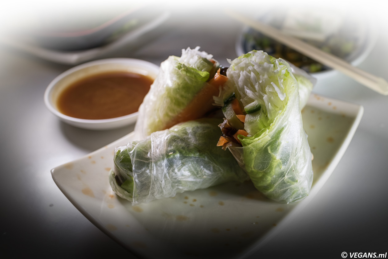 Vegan Tofu An Spring roll